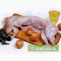 Продам мясо кролика киев органика домашнее