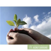 Обучение бизнесу на сапропеле. Курсы в Киеве и Львове