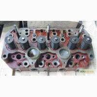 Головка блока цилиндров Д-260 ММЗ (260- /1003012)