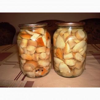 Продам білі гриби мариновані, зібрані у Карпатах