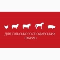 Кліносан, Йодоклін, Клінотоксил - Засоби біобезпеки від виробника - ЗВК