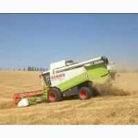 Оказываем услуги по уборке урожая 2018, Николаевская область