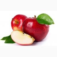 Закуповує підприємство яблука на переробку по всій Україні