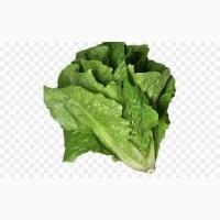 Продам салат Рамэн
