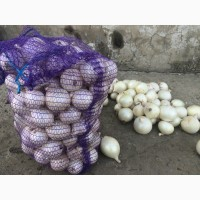 Продам белый лук