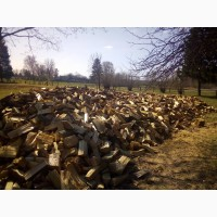 Продам дубовые дрова от производителя