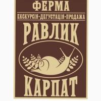 Продам равлик в мушлі MAKSIMA, а також філе равлика