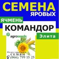 Продам ярый ячмень КОМАНДОР от производителя. Агротрейд/Agroseeds