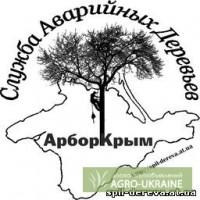 Спилить дерево, обрезать ветки. Крым. Симферополь.