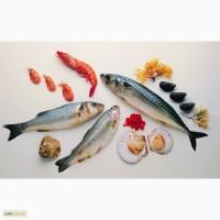 Рыба свежемороженая с Европы