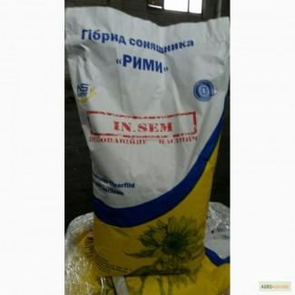 Продаю семена подсолнечника Рими, Рімі, под евролайтинг