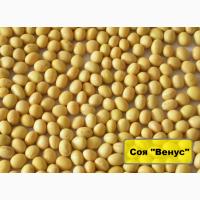 Семена сои Венос, урожай 2017года от компании Дер Трей