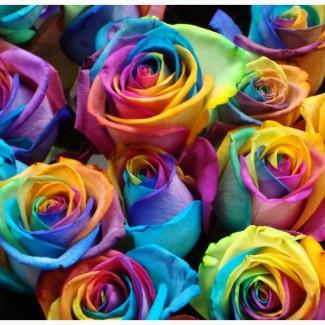 Профессиональная краска для срезанных цветов 50г