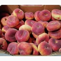Инжирный персик. PARAGUAYOS. Косточковые фрукты. Испания