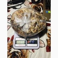 Продам сушені гриби