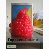 АКЦИЯ!!!!! Саженцы крупноплодной малины