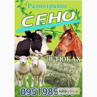 Продам ЛУГОВОЕ сено и ЛЮЦЕРНУ в тюках с доставкой по Киевской области
