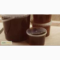 Куплю мед гречаний хорошой якості