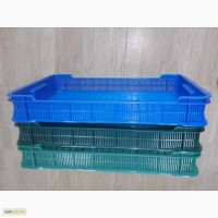 Продам ящики чешка низька, ягідний, малина, ожина чорниця, розмір 600*400*95.нові