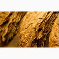 Куплю табак листовой любых сортов