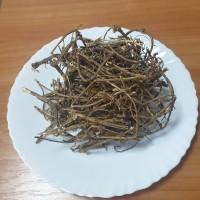 Продам корінь кропиви