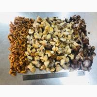 Продам замороженные и сушенные лесные грибы - вся Украина