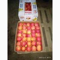 Яблука з холодильника (смарт фреш)