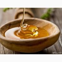 Закупаем мёд по выгодной цене