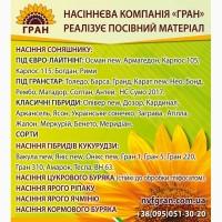 Пропонуємо насіння соняшнику гібрид Карат ( ПІД ГРАНСТАР / ПОСУХОСТІЙКИЙ )