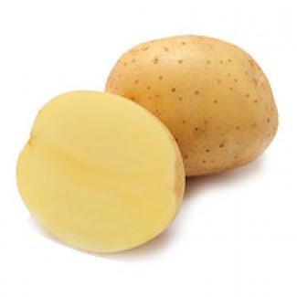 Картофель Сорт Коннект