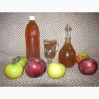 Органический яблочный уксус на меду