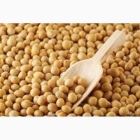 Купляєм сою без ГМО
