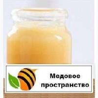 Гомогенат трутневых личинок - лучшее средство для Иммунитета, Потенции и мужского Здоровья