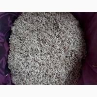 Продам траву яснотки 2 тони і цвіт яснотки 0.5 т