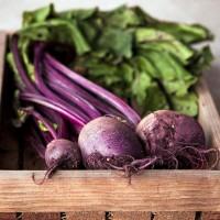 Selling 100% Nutrition Органический свекольный порошок Beet Root Powder +45 36 99 01 82