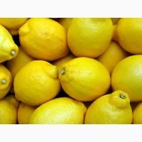 Закупаем лимоны оптом