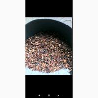 Продаём ядро грецкого ореха (кондитерку)