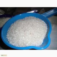 Продаю рис шлифованный