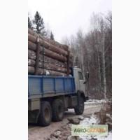Услуги лесовоза по Харькову и области