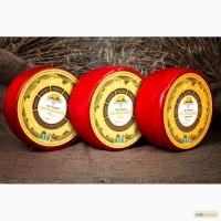 Натуральный Сыр в ассортименте от производителя