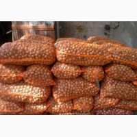 Продам грецкий орех цельный (кругляк) и очищенный. Урожай 2017 г