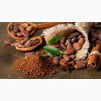 Какао-порошок обезжиренный 10-12%