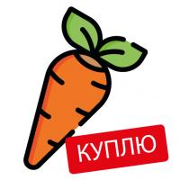 Закупаем морковь оптом