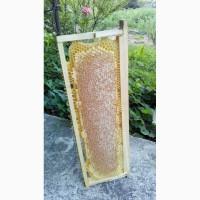 Сотовий мед ціна за рамку