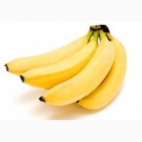 Закупаем бананы оптом