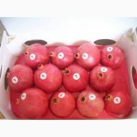 We sell Fresh Pomegranate