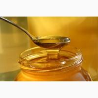 Продам мед соняшника 2019 року