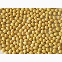 Закупаем сою с протеином от 24, повышенной влагой и масличной примесью. Самовывоз