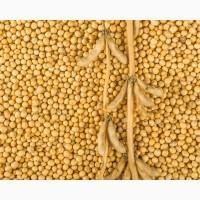 Продам сою ГМО, не ГМО