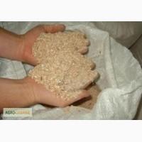 Отруби пшеничные оптом
